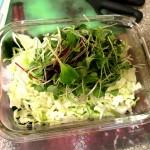 Seaweed Salad-Add MicroGreens