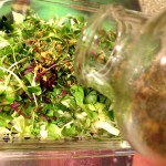 Seaweed Salad-Add Spices