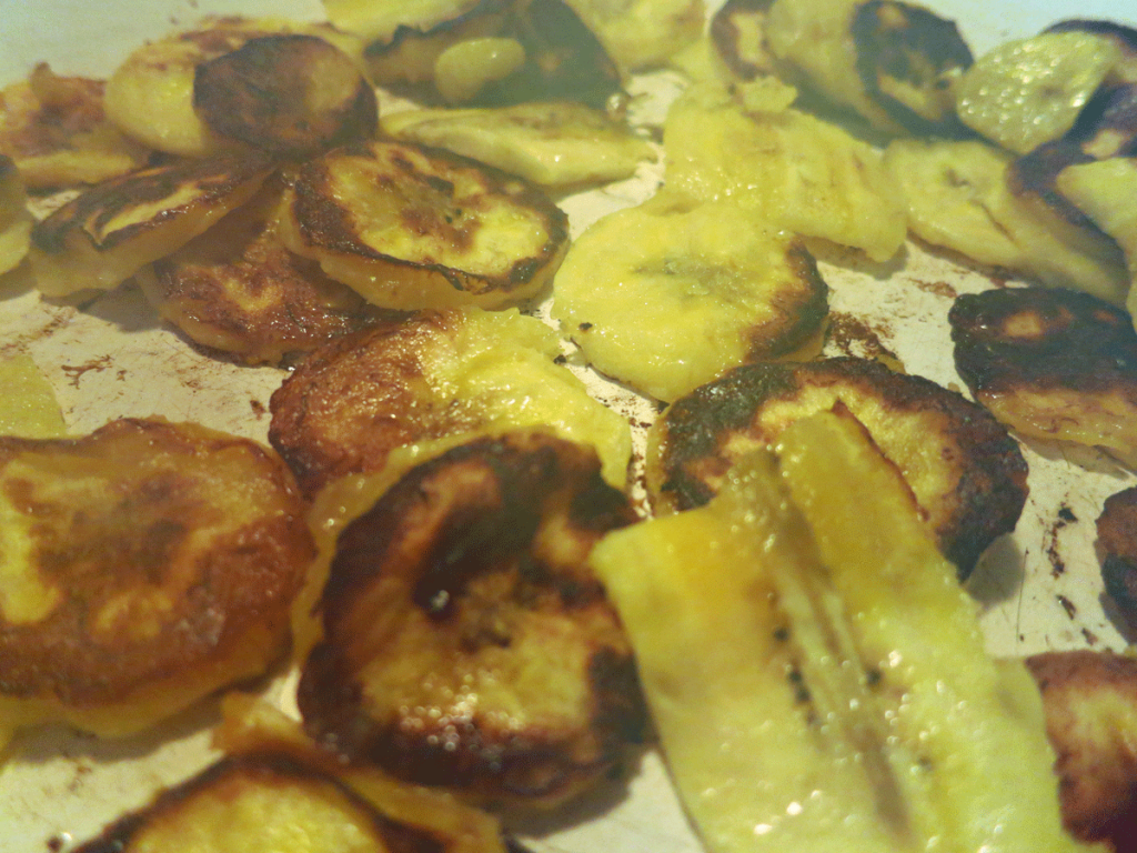 Browned Plantain Slices Again